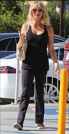Celebrity Photo: Goldie Hawn 1200x2332   280 kb Viewed 41 times @BestEyeCandy.com Added 220 days ago
