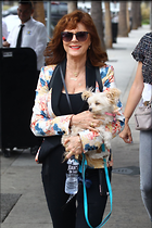 Celebrity Photo: Susan Sarandon 1200x1800   243 kb Viewed 33 times @BestEyeCandy.com Added 44 days ago