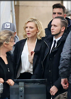 Celebrity Photo: Cate Blanchett 1200x1683   189 kb Viewed 30 times @BestEyeCandy.com Added 97 days ago