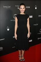 Celebrity Photo: Virginie Ledoyen 1200x1800   142 kb Viewed 25 times @BestEyeCandy.com Added 100 days ago