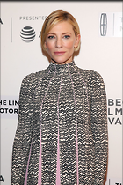 Celebrity Photo: Cate Blanchett 1200x1800   476 kb Viewed 18 times @BestEyeCandy.com Added 27 days ago