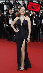 Celebrity Photo: Marion Cotillard 2105x3599   2.5 mb Viewed 1 time @BestEyeCandy.com Added 17 days ago