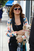 Celebrity Photo: Susan Sarandon 1200x1800   234 kb Viewed 51 times @BestEyeCandy.com Added 44 days ago