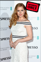 Celebrity Photo: Amy Adams 2741x4118   2.0 mb Viewed 0 times @BestEyeCandy.com Added 40 hours ago