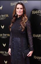 Celebrity Photo: Brooke Shields 1200x1864   246 kb Viewed 53 times @BestEyeCandy.com Added 147 days ago