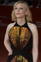 Celebrity Photo: Cate Blanchett 1200x1801   200 kb Viewed 40 times @BestEyeCandy.com Added 122 days ago