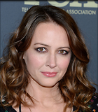 Celebrity Photo: Amy Acker 1200x1375   274 kb Viewed 45 times @BestEyeCandy.com Added 73 days ago