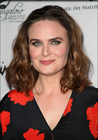 Celebrity Photo: Emily Deschanel 1200x1713   257 kb Viewed 19 times @BestEyeCandy.com Added 74 days ago
