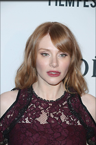 Celebrity Photo: Bryce Dallas Howard 1333x2000   347 kb Viewed 17 times @BestEyeCandy.com Added 53 days ago