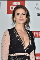 Celebrity Photo: Hayley Atwell 1200x1800   258 kb Viewed 37 times @BestEyeCandy.com Added 94 days ago