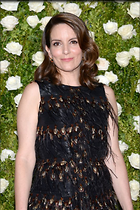 Celebrity Photo: Tina Fey 535x803   99 kb Viewed 59 times @BestEyeCandy.com Added 97 days ago