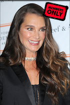 Celebrity Photo: Brooke Shields 2400x3600   1.8 mb Viewed 1 time @BestEyeCandy.com Added 175 days ago