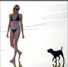 Celebrity Photo: Stephanie Pratt 1200x1184   77 kb Viewed 26 times @BestEyeCandy.com Added 98 days ago