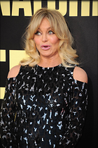 Celebrity Photo: Goldie Hawn 1200x1803   391 kb Viewed 80 times @BestEyeCandy.com Added 494 days ago