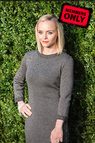 Celebrity Photo: Christina Ricci 2000x3000   1.8 mb Viewed 1 time @BestEyeCandy.com Added 39 days ago