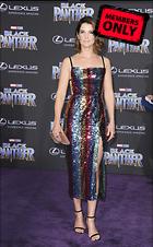 Celebrity Photo: Cobie Smulders 2504x4040   1.9 mb Viewed 2 times @BestEyeCandy.com Added 12 days ago