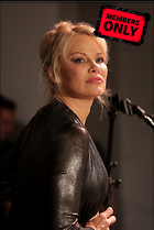 Celebrity Photo: Pamela Anderson 2230x3335   2.4 mb Viewed 1 time @BestEyeCandy.com Added 31 days ago
