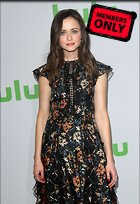 Celebrity Photo: Alexis Bledel 2466x3600   1.7 mb Viewed 2 times @BestEyeCandy.com Added 65 days ago