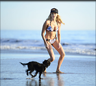 Celebrity Photo: Stephanie Pratt 1200x1080   107 kb Viewed 29 times @BestEyeCandy.com Added 58 days ago