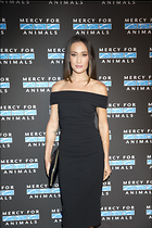 Celebrity Photo: Maggie Q 1200x1800   226 kb Viewed 39 times @BestEyeCandy.com Added 184 days ago