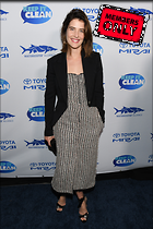 Celebrity Photo: Cobie Smulders 3303x4954   3.2 mb Viewed 3 times @BestEyeCandy.com Added 3 days ago