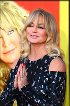 Celebrity Photo: Goldie Hawn 1200x1796   323 kb Viewed 82 times @BestEyeCandy.com Added 576 days ago