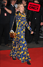 Celebrity Photo: Rosamund Pike 2564x3991   1.4 mb Viewed 1 time @BestEyeCandy.com Added 3 days ago