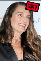 Celebrity Photo: Brooke Shields 2400x3600   2.0 mb Viewed 1 time @BestEyeCandy.com Added 175 days ago