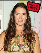 Celebrity Photo: Brooke Shields 2631x3300   1.3 mb Viewed 0 times @BestEyeCandy.com Added 114 days ago