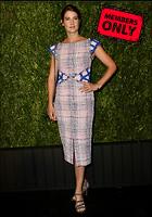 Celebrity Photo: Cobie Smulders 3478x4958   3.9 mb Viewed 4 times @BestEyeCandy.com Added 56 days ago