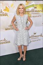 Celebrity Photo: Courtney Thorne Smith 1200x1800   330 kb Viewed 112 times @BestEyeCandy.com Added 131 days ago