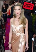 Celebrity Photo: Amber Heard 2456x3500   3.8 mb Viewed 3 times @BestEyeCandy.com Added 15 days ago