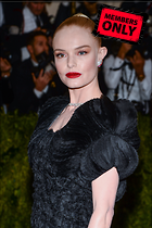 Celebrity Photo: Kate Bosworth 2665x4000   3.4 mb Viewed 1 time @BestEyeCandy.com Added 45 days ago