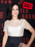 Celebrity Photo: Mary Louise Parker 3336x4512   1.5 mb Viewed 0 times @BestEyeCandy.com Added 370 days ago