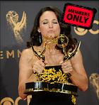 Celebrity Photo: Julia Louis Dreyfus 2845x3000   1.3 mb Viewed 2 times @BestEyeCandy.com Added 184 days ago