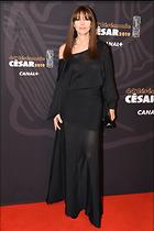 Celebrity Photo: Monica Bellucci 1200x1798   225 kb Viewed 61 times @BestEyeCandy.com Added 29 days ago