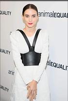 Celebrity Photo: Rooney Mara 1200x1764   169 kb Viewed 6 times @BestEyeCandy.com Added 17 days ago