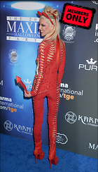 Celebrity Photo: Tara Reid 3000x5239   2.0 mb Viewed 4 times @BestEyeCandy.com Added 30 days ago