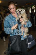 Celebrity Photo: Brittany Snow 12 Photos Photoset #362347 @BestEyeCandy.com Added 462 days ago