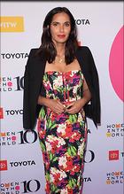 Celebrity Photo: Padma Lakshmi 1200x1879   250 kb Viewed 15 times @BestEyeCandy.com Added 41 days ago