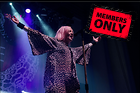 Celebrity Photo: Shirley Manson 3960x2643   3.6 mb Viewed 1 time @BestEyeCandy.com Added 979 days ago