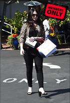 Celebrity Photo: Michelle Trachtenberg 2531x3704   1.8 mb Viewed 0 times @BestEyeCandy.com Added 41 days ago
