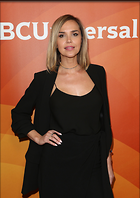 Celebrity Photo: Arielle Kebbel 2548x3600   752 kb Viewed 34 times @BestEyeCandy.com Added 252 days ago