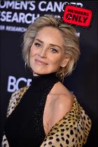 Celebrity Photo: Sharon Stone 3280x4928   2.4 mb Viewed 1 time @BestEyeCandy.com Added 52 days ago