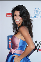 Celebrity Photo: Angie Harmon 1200x1800   207 kb Viewed 227 times @BestEyeCandy.com Added 280 days ago
