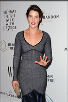 Celebrity Photo: Cobie Smulders 1200x1800   355 kb Viewed 17 times @BestEyeCandy.com Added 15 days ago