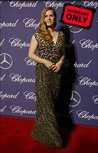 Celebrity Photo: Amy Adams 2413x3751   1.4 mb Viewed 6 times @BestEyeCandy.com Added 224 days ago