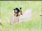 Celebrity Photo: Alessandra Ambrosio 1920x1432   311 kb Viewed 7 times @BestEyeCandy.com Added 21 days ago