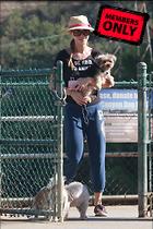 Celebrity Photo: Joanna Krupa 2333x3500   2.5 mb Viewed 2 times @BestEyeCandy.com Added 18 days ago