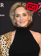 Celebrity Photo: Sharon Stone 3188x4342   1.4 mb Viewed 2 times @BestEyeCandy.com Added 52 days ago